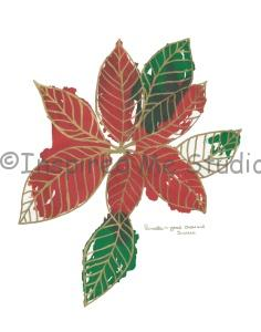 Green and red Poinsettia floriography inkblot artwork. The Poinsettia ~ Good cheer and success.